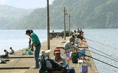 高浜の釣り情報